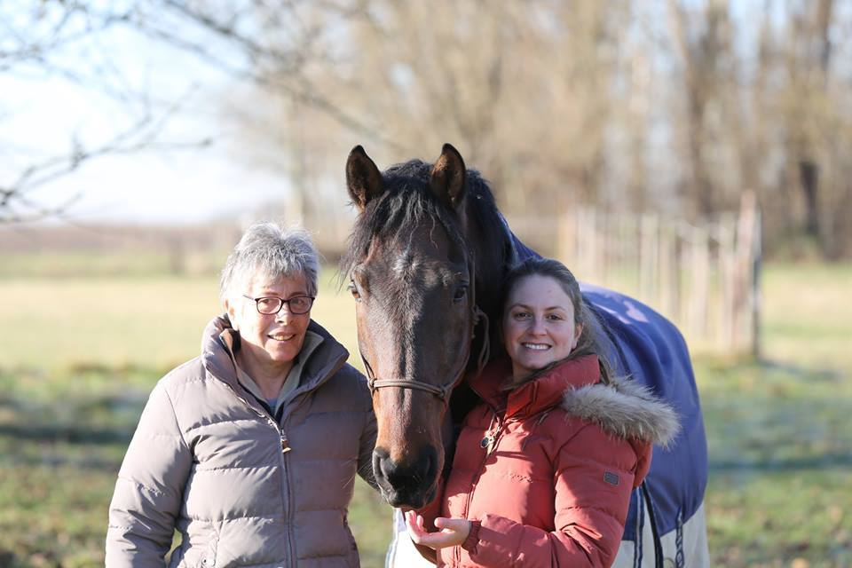 Equipe Horse Remedy